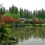 shanghai-may-2008-042